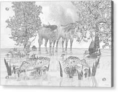 Custom Sketch 47 Acrylic Print