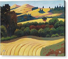Cut Grass Acrylic Print