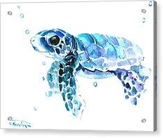 Cute Baby Turtle Acrylic Print