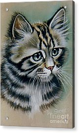 Cute Kitten Acrylic Print by Val Stokes