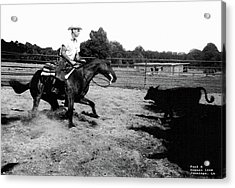 Cutting  Horse  1968 Acrylic Print by Carl Deaville