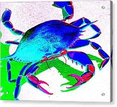 Cyan Crab Acrylic Print