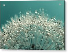 Cyan Sparkles Acrylic Print by Sharon Johnstone
