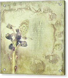 Cycle Acrylic Print by Priska Wettstein