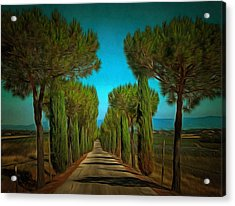 Cypress Avenue Acrylic Print by Dorothy Berry-Lound