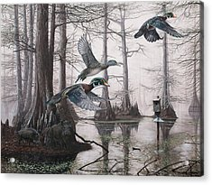 Cypress Bayou Neighbors Acrylic Print