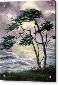 Cypress Tree Just Before The Rain Acrylic Print by Laura Iverson