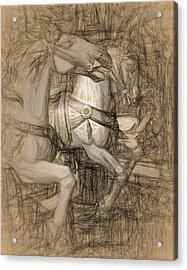 Da Vinci Carousel Acrylic Print