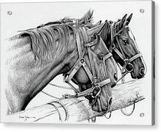 Da158 3 Horses Daniel Adams  Acrylic Print