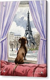 Dachshund In Paris Acrylic Print