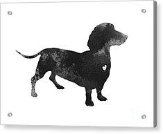 Dachshund Watercolor Black Silhouette Acrylic Print