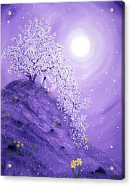 Daffodil Dawn Meditation Acrylic Print by Laura Iverson