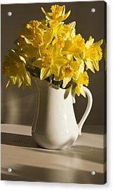 Daffodil Filled Jug Acrylic Print by Sandra Foster