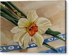 Daffodil Reclining Acrylic Print by Cheryl Pass