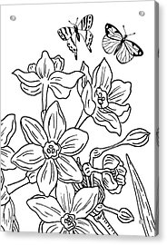 Daffodils And Butterflies Drawing Acrylic Print