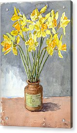 Daffodils In A Pot. Acrylic Print by Mike Lester