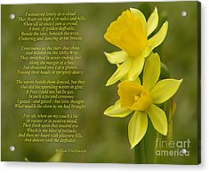 Daffodils Poem By William Wordsworth Acrylic Print