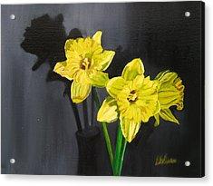 Daffodil's Yellows Acrylic Print