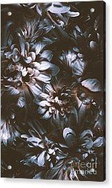 Dahlia Abstraction Acrylic Print by Jorgo Photography - Wall Art Gallery