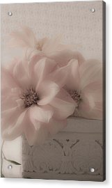 Dahlias Oh So Soft Acrylic Print