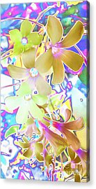 Dainty Bloosoms Acrylic Print