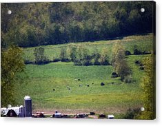 Dairy Farm In The Finger Lakes Acrylic Print by David Lane