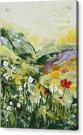 Daisies And Poppies Acrylic Print