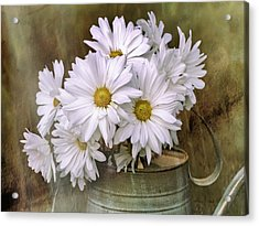 Acrylic Print featuring the photograph Daisies In Antique Watering Can by Bellesouth Studio