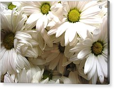 Acrylic Print featuring the photograph Daisies Make Me Smile by Laura  Grisham