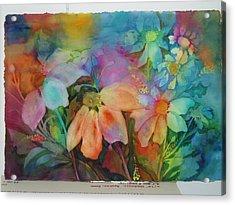 Daisies Acrylic Print by Maritza Bermudez