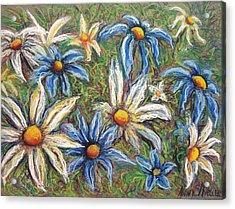 Daisies Pastel Acrylic Print by Nancy Mueller