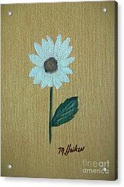 Daisy 2 Acrylic Print by Marsha Heiken
