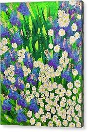 Daisy And Glads Acrylic Print