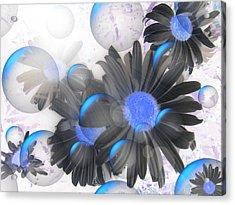 Daisy Bubbles Acrylic Print
