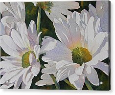 Daisy Bunch Acrylic Print by Judy Mercer