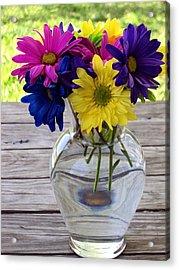 Daisy Crazy Acrylic Print by Angelina Vick