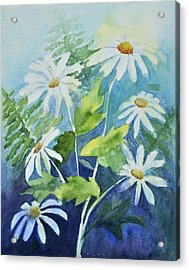 Daisy Delight  Acrylic Print by Sandy Fisher