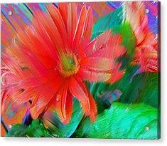 Daisy Fun Acrylic Print