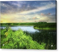 Dakota Wetlands 7 Acrylic Print
