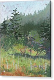 Dale Creek Meadow Acrylic Print