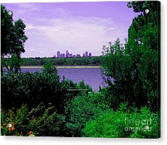 Acrylic Print featuring the photograph Dallas From The Park by Robert D McBain