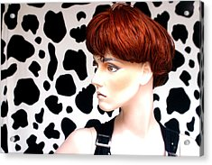 Dally Makes Her Point Acrylic Print by Jez C Self