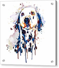 Acrylic Print featuring the mixed media Dalmatian Head by Marian Voicu