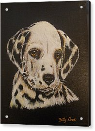 Acrylic Print featuring the painting Dalmation by Betty-Anne McDonald