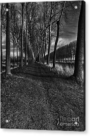 Damme, Belgium Acrylic Print by Nichola Denny