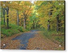 Dana Common Road In Autumn Quabbin Reservoir Acrylic Print by John Burk