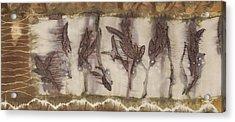 Dance Of The Eucalyptus Leaves Acrylic Print by Carolyn Doe