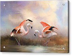 Acrylic Print featuring the photograph Dance Of The Flamingos  by Bonnie Barry