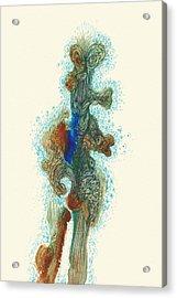 Dancer- #ss14dw030 Acrylic Print by Satomi Sugimoto