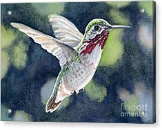 Dancing Calliope Acrylic Print by Lorraine Watry
